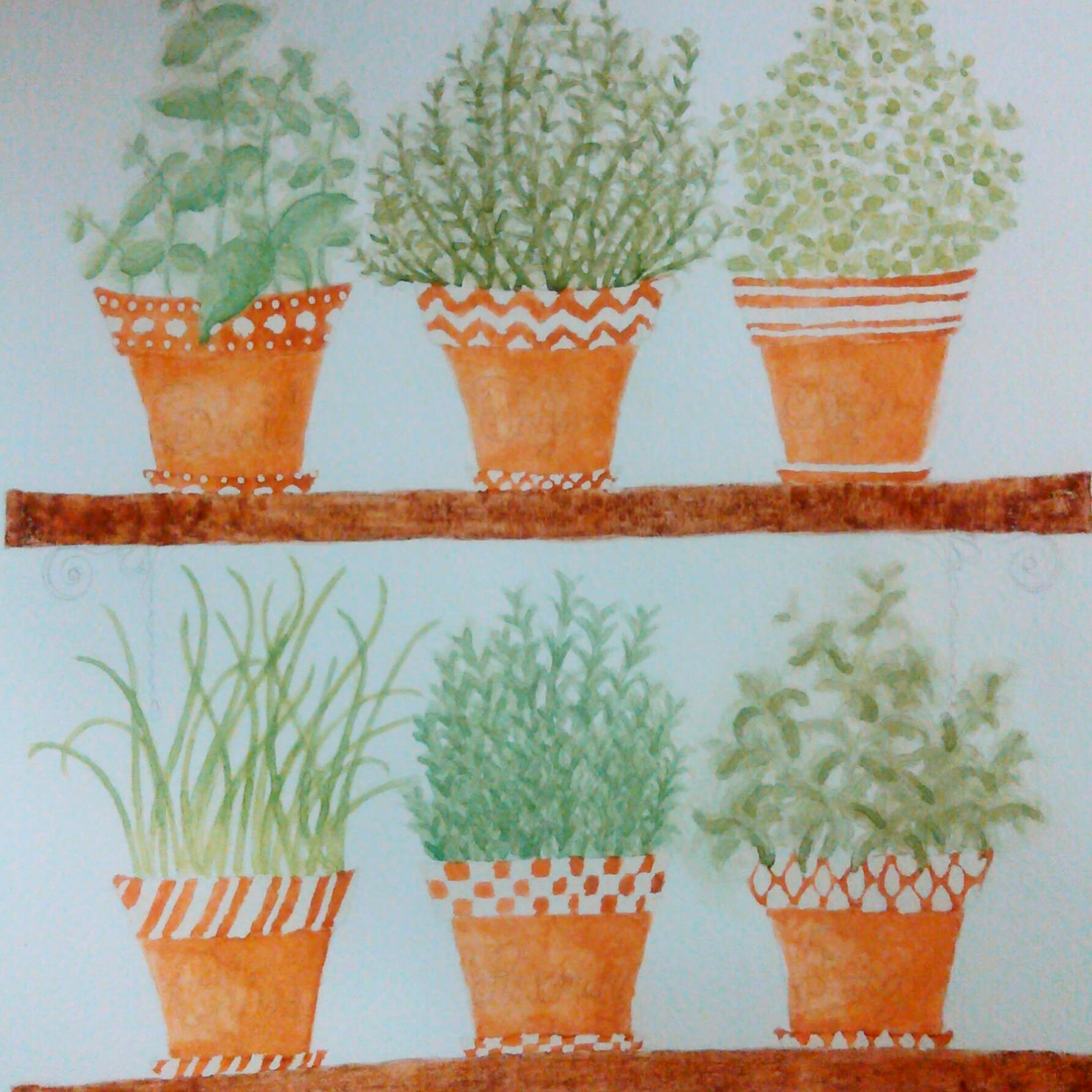 Watercolor herbs in terra cotta pots painting by Shalom Schultz Designs. Potted garden. Geometric patterns art.