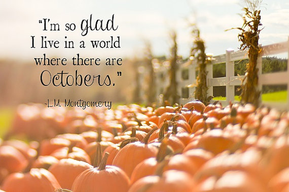 Anne of Green Gables October quote. L. M. Montgomery. Pumpkin patch and cornstalks on wood fence at a country farm. Photography print by ShadetreePhotography on Etsy.